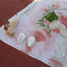 Hormoz handicrafts with oyster