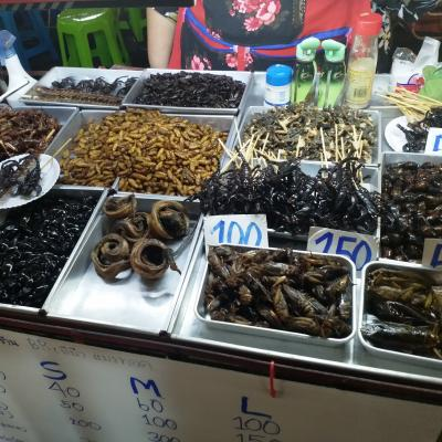 Insects, Arachnoids and Scorpios for dinner. Delicious. Bangkok