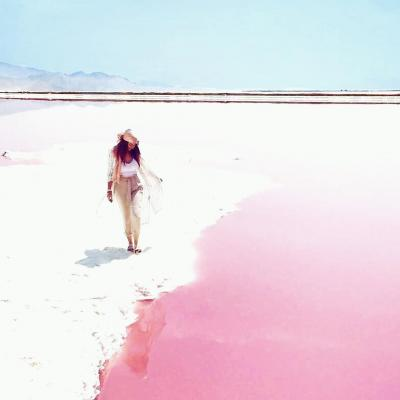 Travel to Maharloo pink lake near Shiraz of Iran