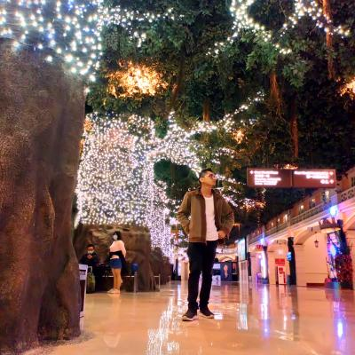 First World Hotel, Resorts World Genting