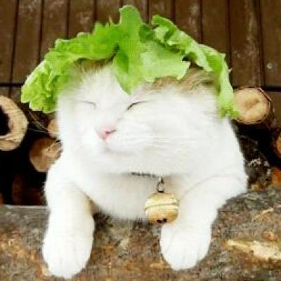 We live in want Planet !!!!!